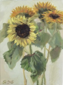 2015-sunflowers